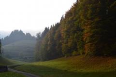 Wolftal im Herbst